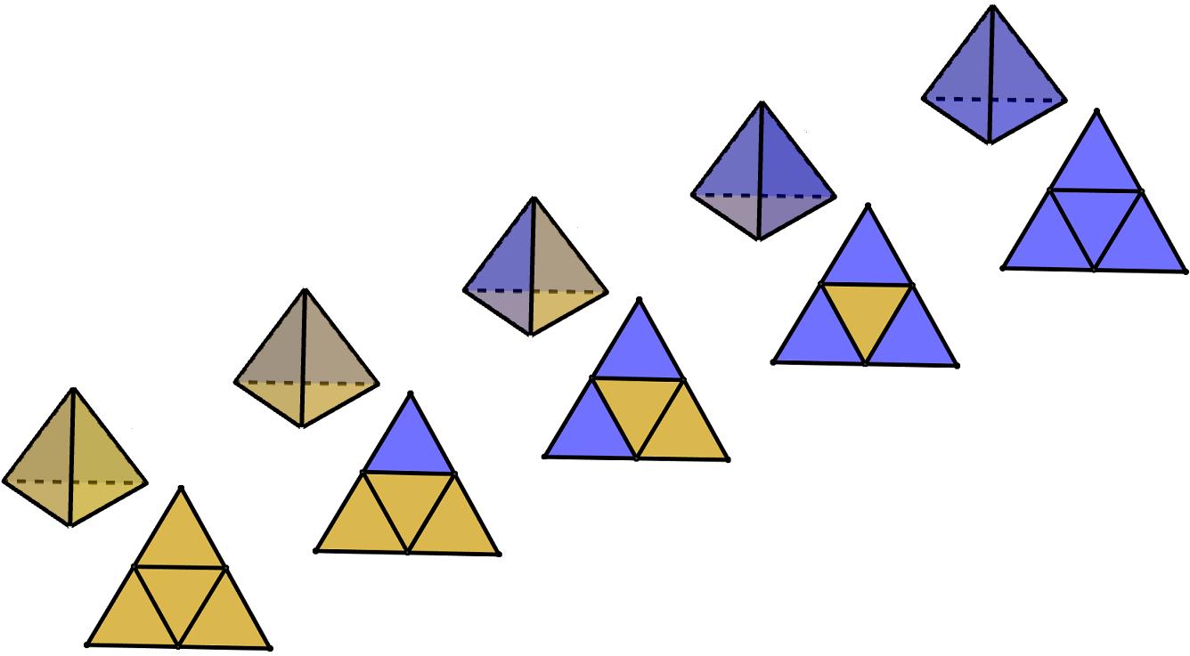 Si vedono cinque tetraedri e i loro sviluppi piani; i poliedri sono colorati nei 5 modi diversi in cui è possibile colorare un tetraedro usando due colori