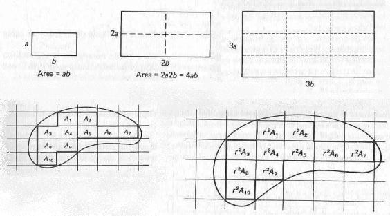 """Illustrazioni tratte dalla lezione di Lang """"Che cos'è pi greco?""""- In esse si evidenzia che il rapporto tra le aree di due rettangoli simili è uguale al quadrato del loro rapporto di similitudine e che questo vale anche per figure simili di forma qualsiasi."""